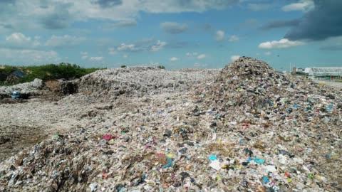vídeos y material grabado en eventos de stock de poner verde - bolsa de plástico