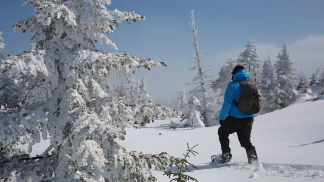 travel cinemagraph of man walking with snowshoes in winter forest landscape - quebec stock videos and b-roll footage