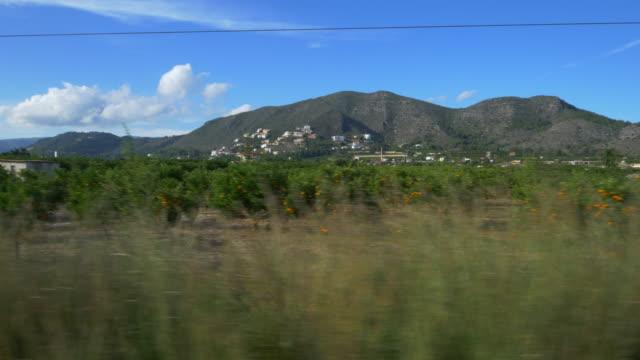 travel shot, orange orchards and white houses