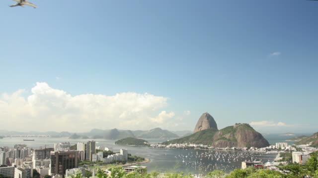 travel to rio de janeiro - establishing shot stock videos & royalty-free footage