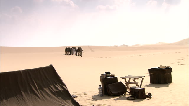 a traveler meets with a bedouin camel caravan as they come near his desert camp. - ベドウィン族点の映像素材/bロール