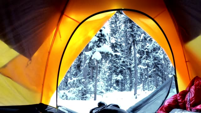 traveler rising out of tent in snowy pine forest at yoho national park - orange colour stock videos & royalty-free footage