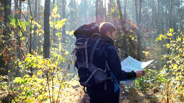 a traveler walks in an unfamiliar forest with a map in his hands. - survival stock videos & royalty-free footage
