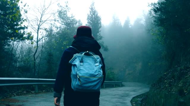 林道を歩いてのバックパック旅行 - バックパック点の映像素材/bロール