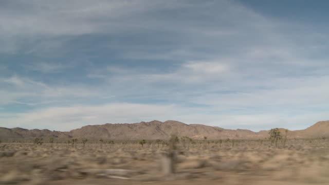 Traveling across desert in Joshua Tree National Park