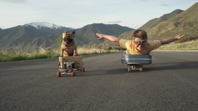 vídeos de stock, filmes e b-roll de menino viajante e seu cão - 10 11 anos
