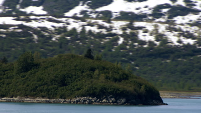 Traveling time-lapse of a green hill on the shore of Glacier Bay, Alaska