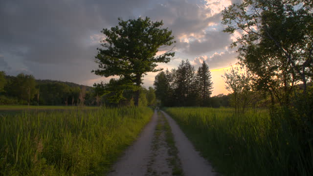 travelling down a dirt road in a field at sunset - natural parkland stock videos & royalty-free footage