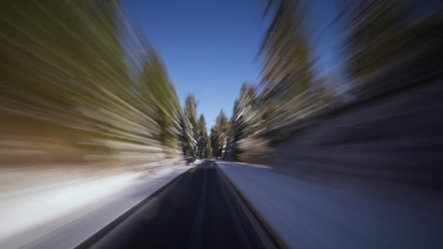 T/L, POV Travelling on a snow covered, forest road in the Sierra Nevada