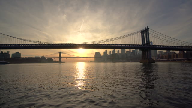 travelling on the east river / new york city, usa - river east stock videos & royalty-free footage