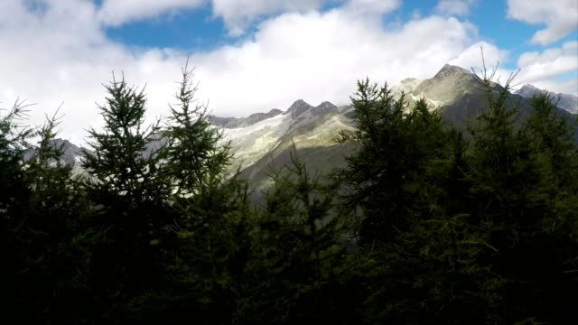 travelling through forest and mountains in swiss mountain rack railway train - train point of view stock videos & royalty-free footage