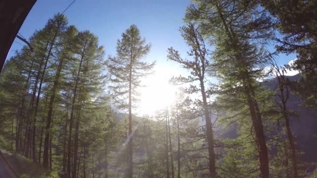 travelling through idyllic forest and mountains on swiss mountain rack railway train - train point of view stock videos & royalty-free footage