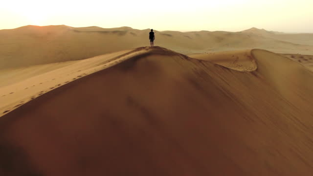 traversing the dunes at dawn - arid climate stock videos and b-roll footage