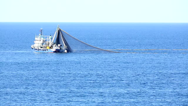 trawl fishing boat 06 - fishing industry stock videos & royalty-free footage