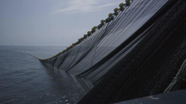 trawl industrial fishing net - atlantic ocean stock videos & royalty-free footage