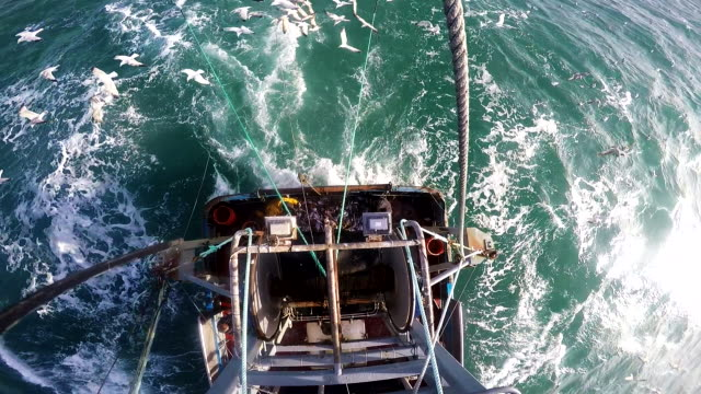 trawler at sea - trawler stock videos & royalty-free footage