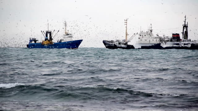 trawler in der nordsee - fischerboot stock-videos und b-roll-filmmaterial
