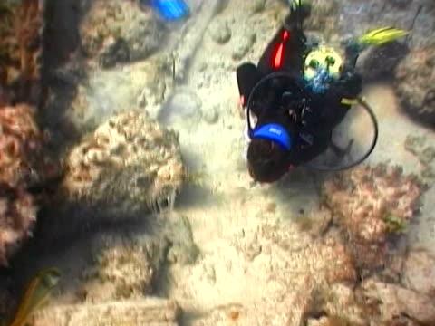 treasure hunting. scuba divers explore the shipwreck - treasure hunt stock videos & royalty-free footage