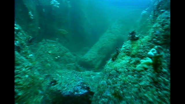 vídeos de stock e filmes b-roll de treasure wreck found off cornish coast file / date unknown underwater shots of shipwreck and divers inspecting it - encontrar