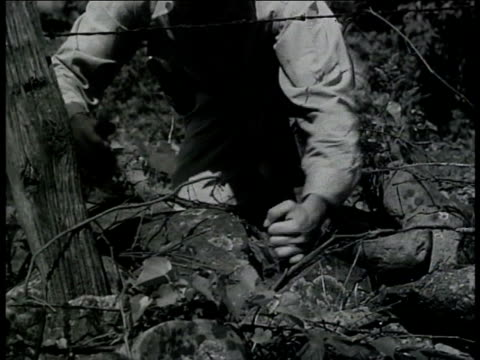 treasury agent cutting wire in foliage ms agent arm locking arresting lookout man vs agents hiding moving into positions behind trees bushes - hiding stock-videos und b-roll-filmmaterial