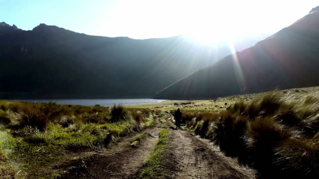 trecking silhouette in mojanda lagoon ecuador - recreational horse riding stock videos and b-roll footage