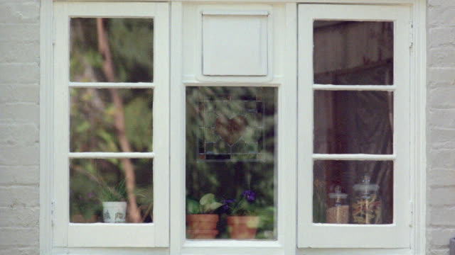 a tree and bushes reflect in the windows of a two-story house. - curtain stock videos & royalty-free footage
