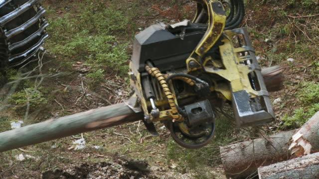 ms pan tree cutting machine sawing tree in forest / pokljuka, triglav national park, slovenia - triglav national park stock videos and b-roll footage