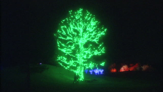 a tree decorated with christmas lights glistens against the dark sky. - fir tree stock videos and b-roll footage