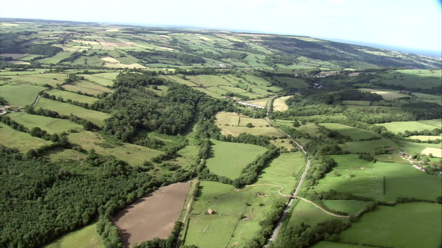 Tree groves divide property lines in the green countryside of Scotland. Available in HD.