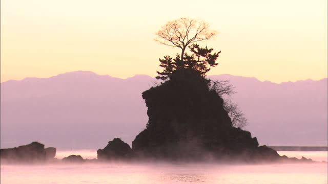 A tree grows from the top of a rocky island in the middle of the mist-covered Sea of Japan.