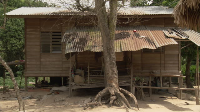a tree grows in front of a small house on stilts in kuala lumpur, malaysia. - stilts stock videos and b-roll footage