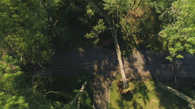 a tree has fallen because of the strong wind and it barricaded the street and destroyed power lines and internet and tv cables in a small town in new jersey after a storm.  aerial video with the fast descending and spinning  camera motion. - cable tv stock videos & royalty-free footage