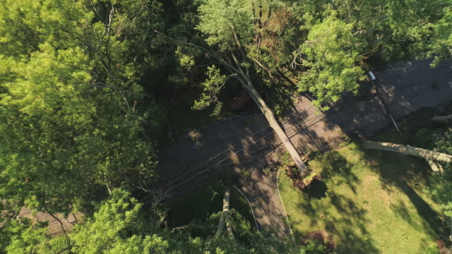 a tree has fallen because of the strong wind and it barricaded the street and destroyed power lines and internet and tv cables in a small town in new jersey after a storm. aerial video with the fast ascending camera motion. - cable tv stock videos & royalty-free footage