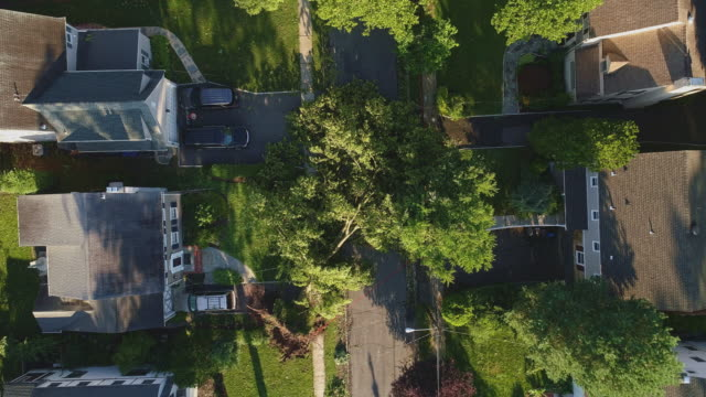 a tree has fallen because of the strong wind and it barricaded the street and destroyed power lines and internet and tv cables in a small town in new jersey after a storm.  aerial video with the slow descending camera motion. - cable tv stock videos & royalty-free footage