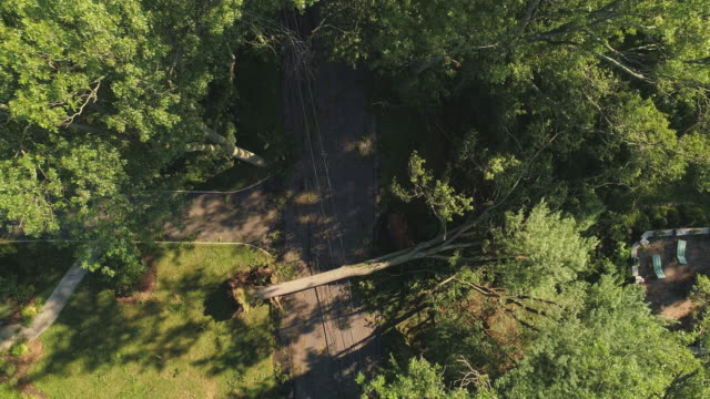 a tree has fallen because of the strong wind and it barricaded the street and destroyed power lines and internet and tv cables in a small town in new jersey after a storm.  aerial video with the ascending camera motion. - cable tv stock videos & royalty-free footage