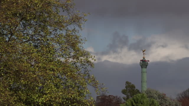 tree in autumn with in the background the column of the place de la bastille - french revolution stock videos & royalty-free footage
