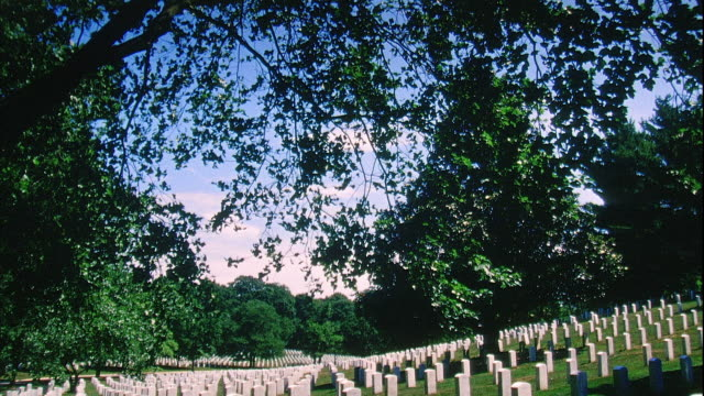 tree leaves td ws rows rows of white grave markers gravestones - アーリントン国立墓地点の映像素材/bロール