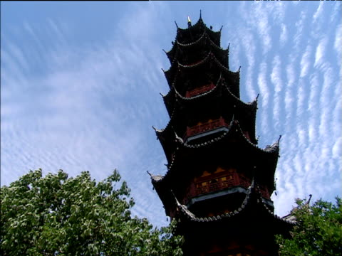 tree leaves wave in breeze at foot of temple pagoda shanghai - temple building video stock e b–roll