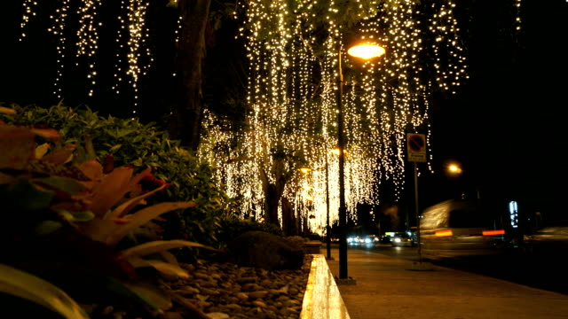 tree lights on the roadside.time lapse dolly shot. - budapest video stock e b–roll