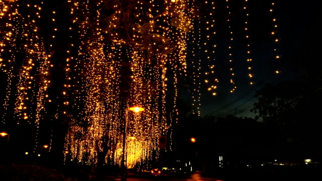 Tree lights on the roadside.time lapse dolly shot.