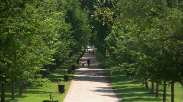 WS, HA tree lined footpath, USA