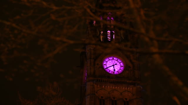 a tree moves in the wind in front of the manchester town hall clock tower, illuminated in purple light - town hall stock videos & royalty-free footage