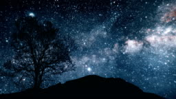 A tree on a hill under a starry sky. Elements of this image furnished by NASA