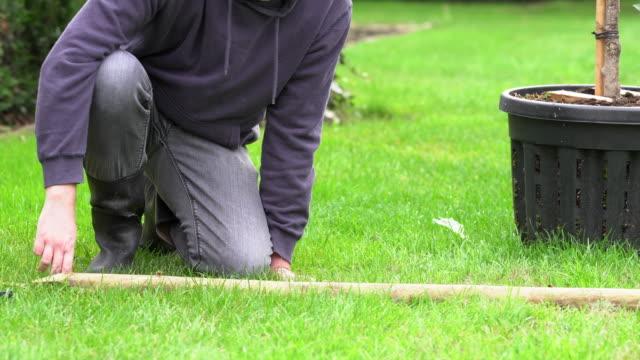 tree pole - depth marker stock videos & royalty-free footage