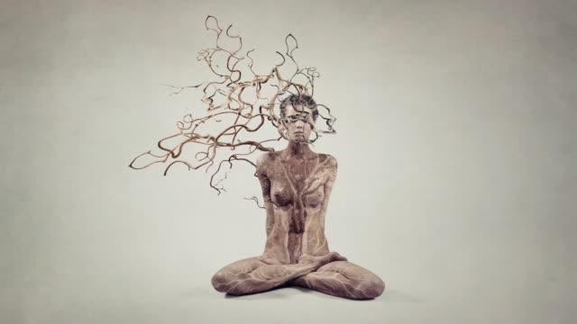 vidéos et rushes de arbre. réflexion. - spiritualité