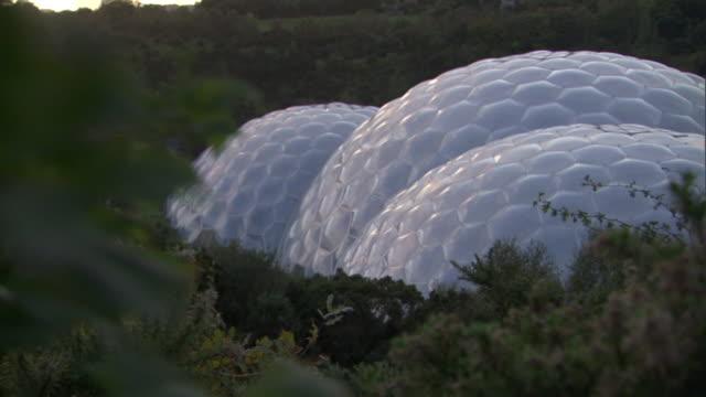 vídeos y material grabado en eventos de stock de a tree rustles near the honeycomb-like biodomes of the eden project. - cornwall inglaterra