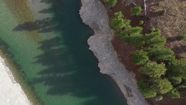 vídeos y material grabado en eventos de stock de tree shadows cast over the snake river from aerial view - río snake