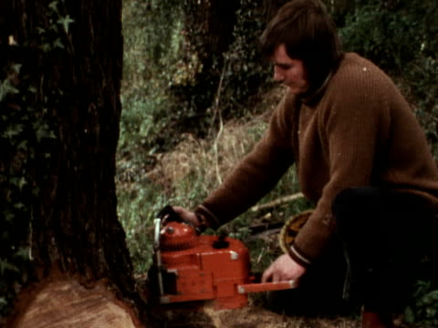a tree surgeon uses a chainsaw to cut down an elm tree which is infected with dutch elm disease - diseased plant stock videos and b-roll footage