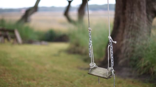 a tree swing in the marsh low country - schaukel stock-videos und b-roll-filmmaterial