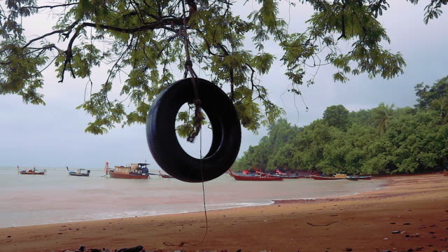 tree swing on the beach - tyre swing stock videos & royalty-free footage